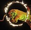 Цирки в Нижней Салде